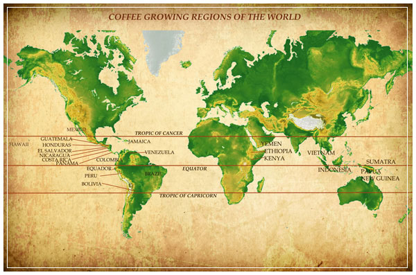 Coffee-Map211
